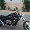 Harley Davidson Other